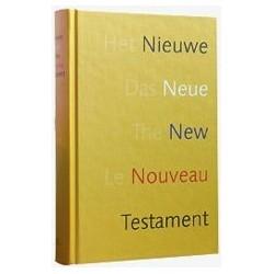 Nouveau Testament en français courant  multilingue illustré