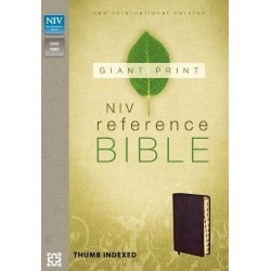 B.ANGL NIV Giant print reference bible burundy thumb index