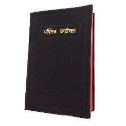B.PANJABI (Inde + Pakistan)-812211637