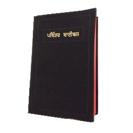 B.PANJABI (INDE + PAKISTAN)-812211637 -W635401